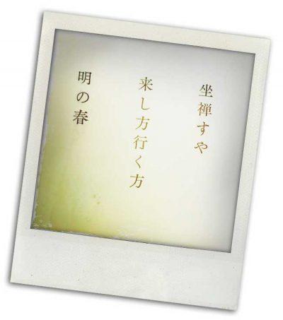 Sprache 5