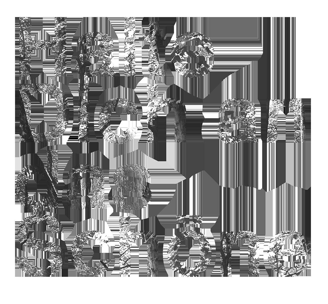 Halte-Dich-an-das-Schoene